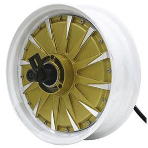 in wheel motor